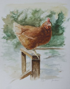 Spring Chicken, Watercolor